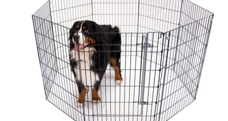Continue to foster a safe crate space