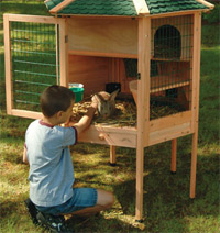 how to clean cages for windows